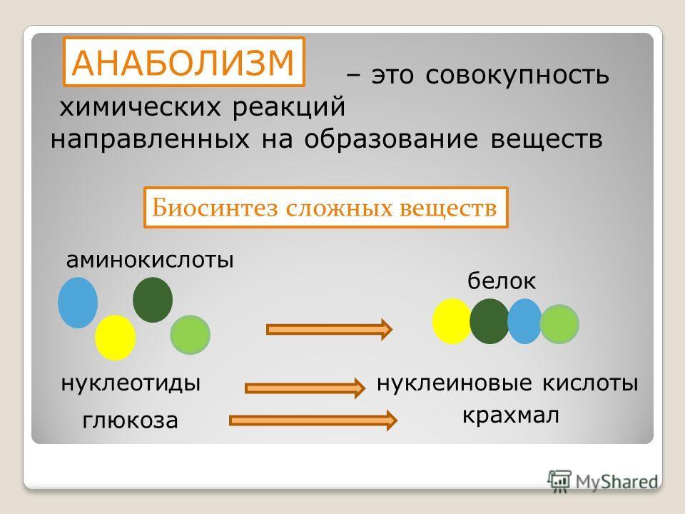 – это совокупность химических реакций направленных на образование веществ Биосинтез сложных веществ аминокислоты белок нуклеотидынуклеиновые кислоты глюкоза крахмал АНАБОЛИЗМ