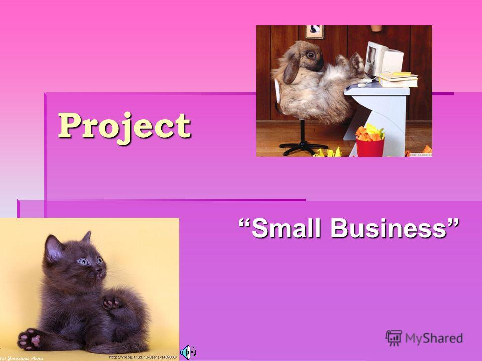 Project Small Business