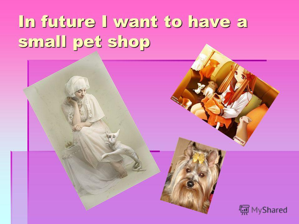 In future I want to have a small pet shop
