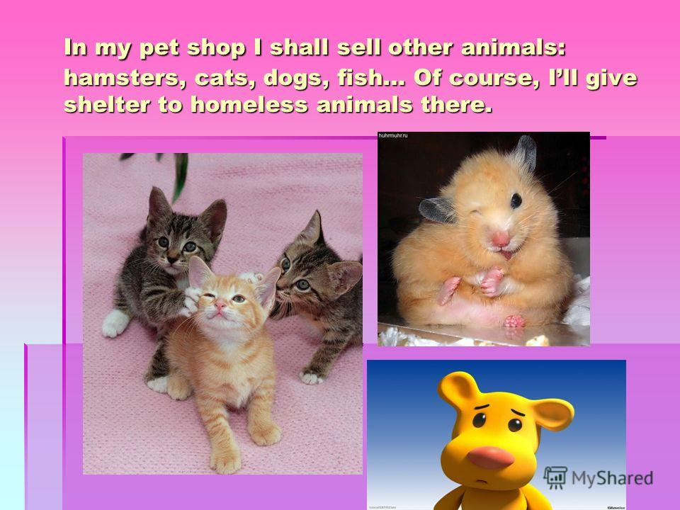 In my pet shop I shall sell other animals: hamsters, cats, dogs, fish… Of course, Ill give shelter to homeless animals there.