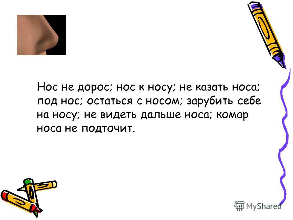 Нос не дорос; нос к носу; не казать носа; под нос; остаться с носом; зарубить себе на носу; не видеть дальше носа; комар носа не подточит.