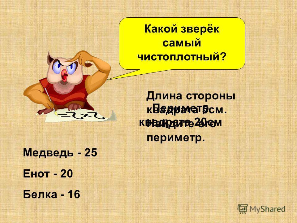 Какой зверёк самый чистоплотный? Медведь - 25 Енот - 20 Белка - 16 Длина стороны квадрата 5см. Найдите его периметр. Периметр квадрата 20см