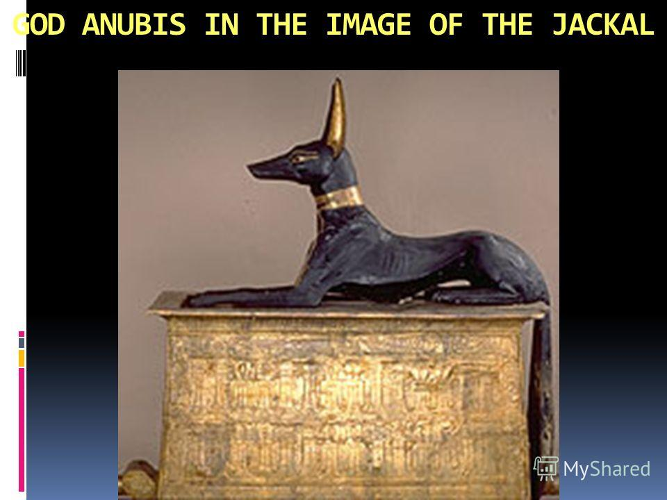 GOD ANUBIS IN THE IMAGE OF THE JACKAL