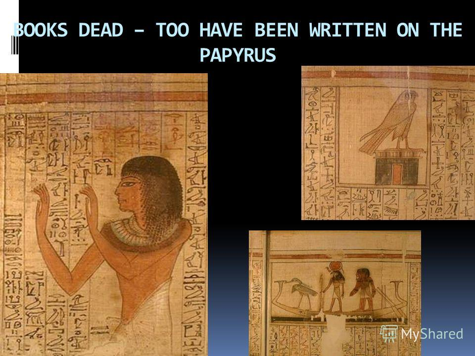 BOOKS DEAD – TOO HAVE BEEN WRITTEN ON THE PAPYRUS