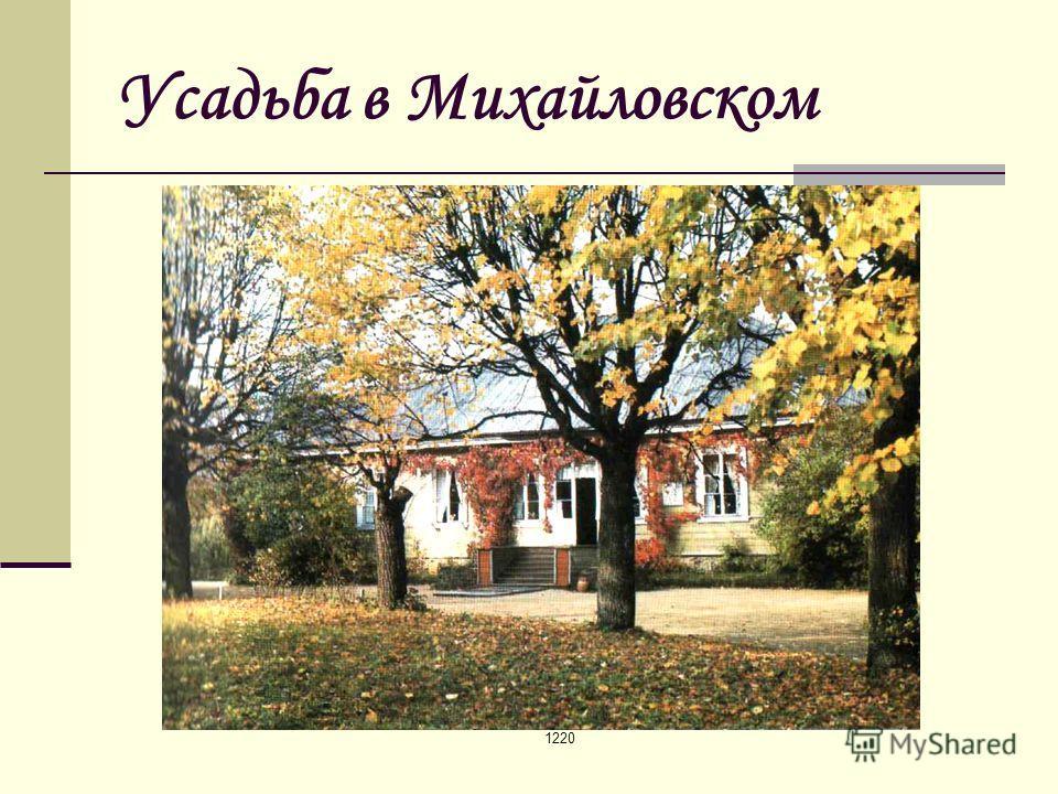 1220 Усадьба в Михайловском