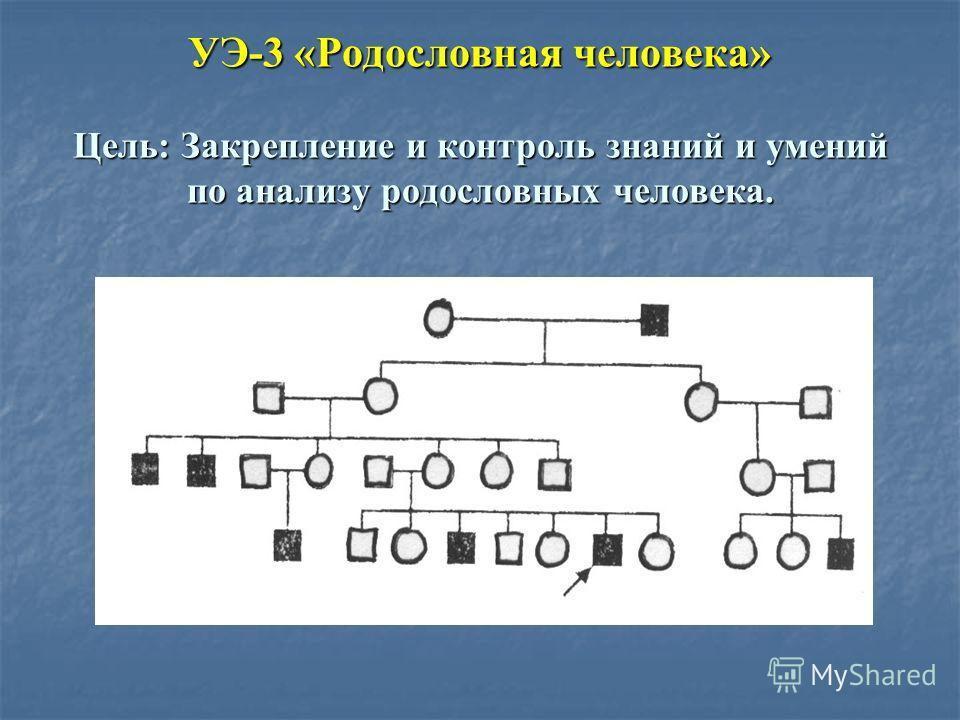 УЭ-3 «Родословная человека» Цель: Закрепление и контроль знаний и умений по анализу родословных человека.