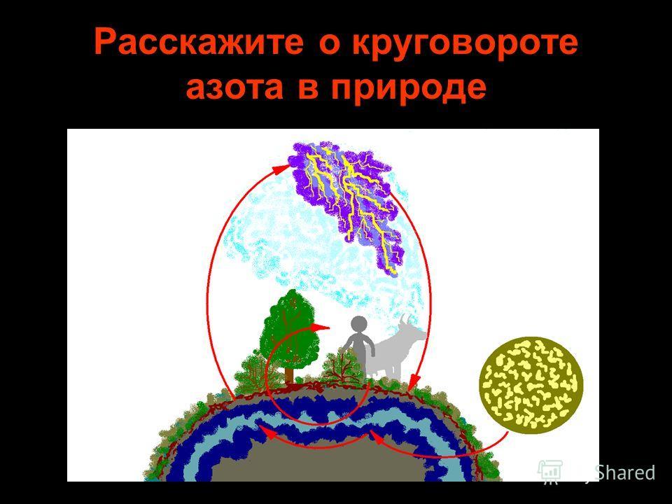 Расскажите о круговороте азота в природе
