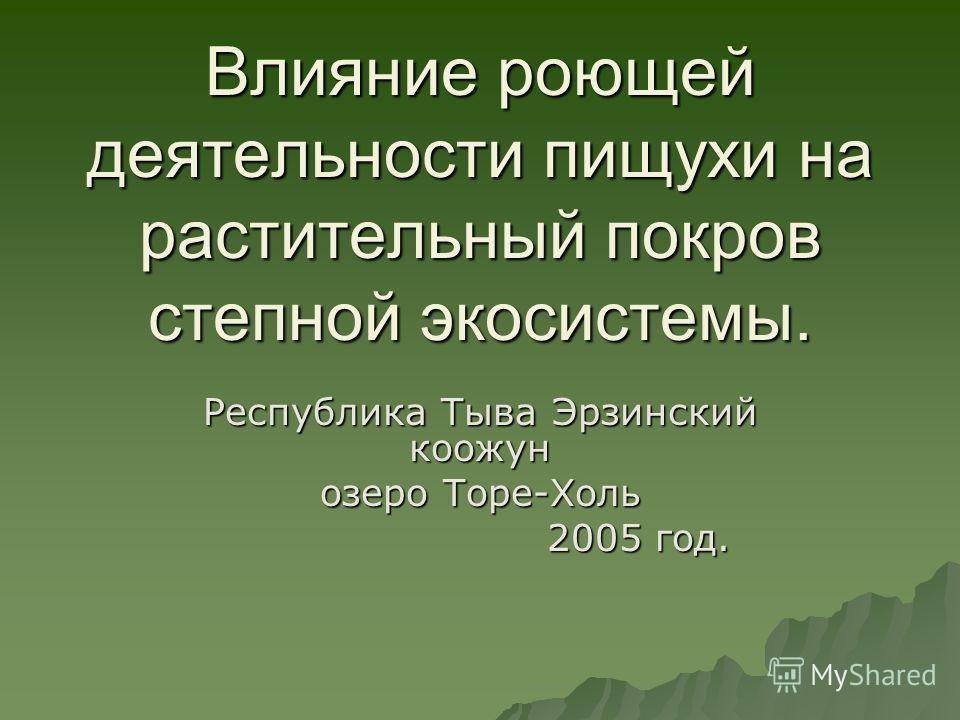 Влияние роющей деятельности пищухи на растительный покров степной экосистемы. Республика Тыва Эрзинский коожун озеро Торе-Холь 2005 год. 2005 год.