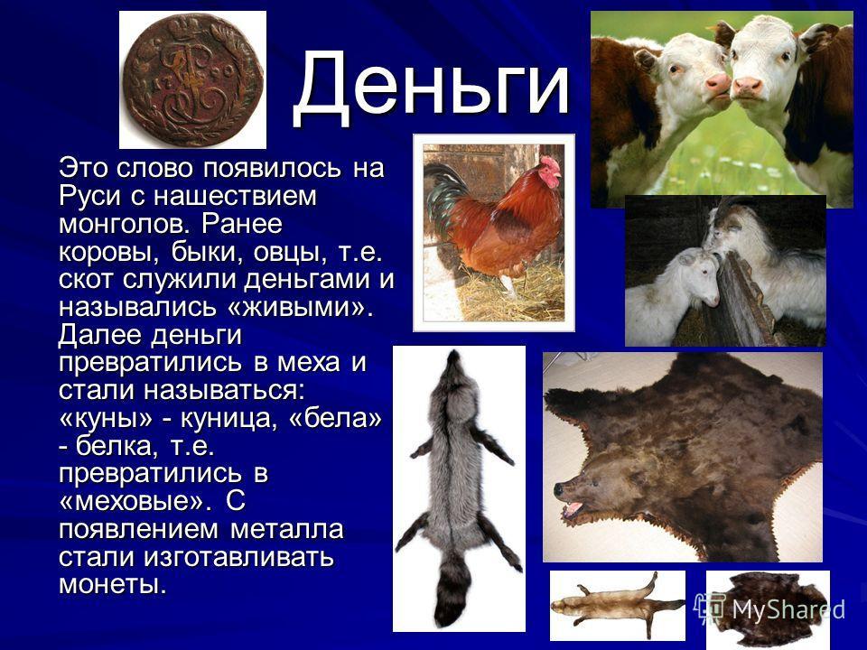 Деньги Это слово появилось на Руси с нашествием монголов. Ранее коровы, быки, овцы, т.е. скот служили деньгами и назывались «живыми». Далее деньги превратились в меха и стали называться: «куны» - куница, «бела» - белка, т.е. превратились в «меховые».