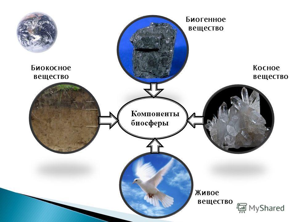 Компоненты биосферы Биокосное вещество Косное вещество Биогенное вещество Живое вещество