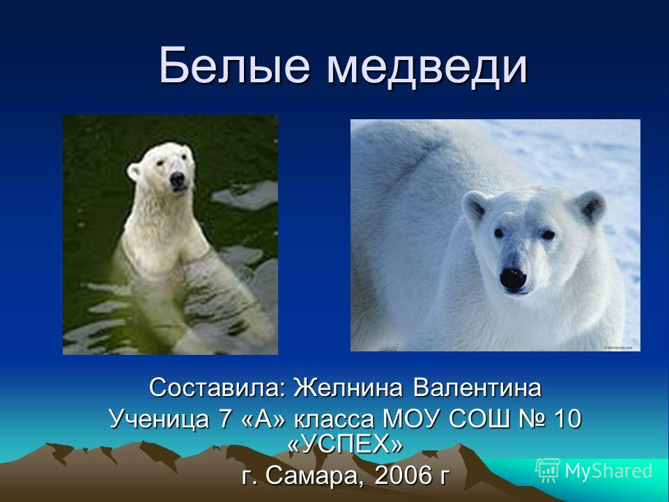 Белые медведи Составила: Желнина Валентина Ученица 7 «А» класса МОУ СОШ 10 «УСПЕХ» г. Самара, 2006 г