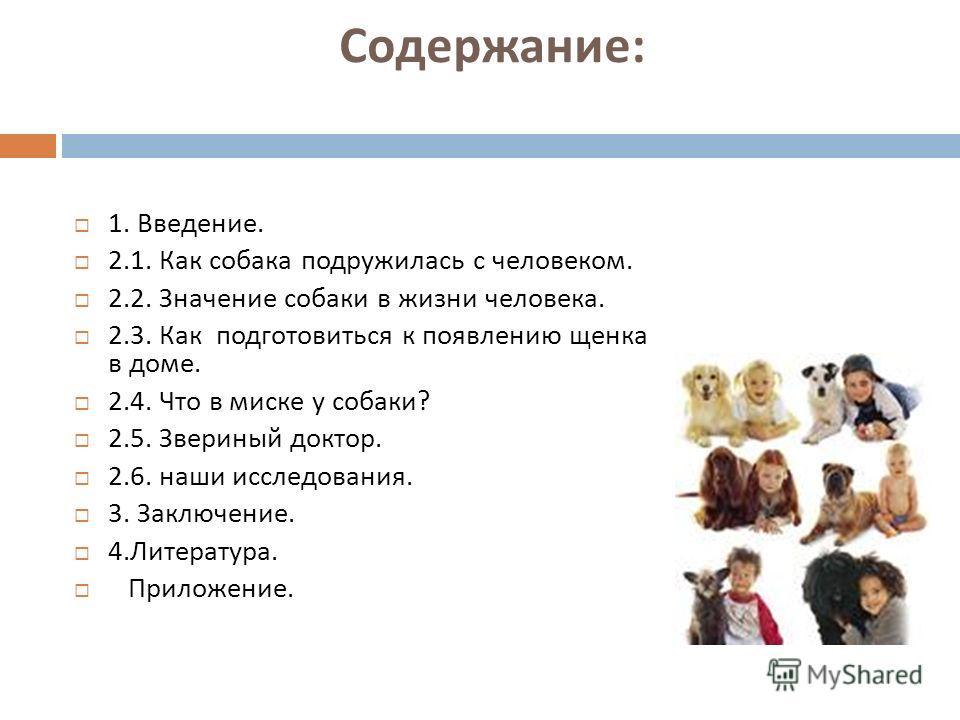 Содержание : 1. Введение. 2.1. Как собака подружилась с человеком. 2.2. Значение собаки в жизни человека. 2.3. Как подготовиться к появлению щенка в доме. 2.4. Что в миске у собаки ? 2.5. Звериный доктор. 2.6. наши исследования. 3. Заключение. 4. Лит