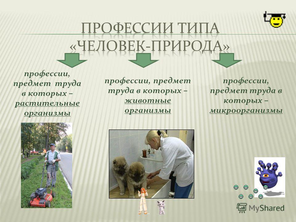 профессии, предмет труда в которых – растительные организмы профессии, предмет труда в которых – животные организмы профессии, предмет труда в которых – микроорганизмы