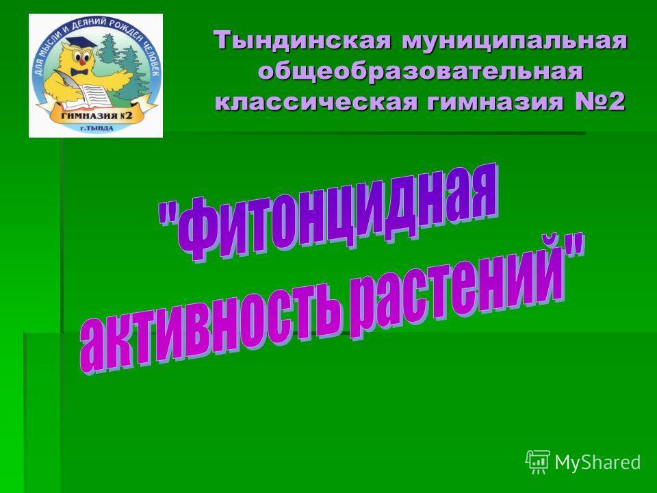 Тындинская муниципальная общеобразовательная классическая гимназия 2