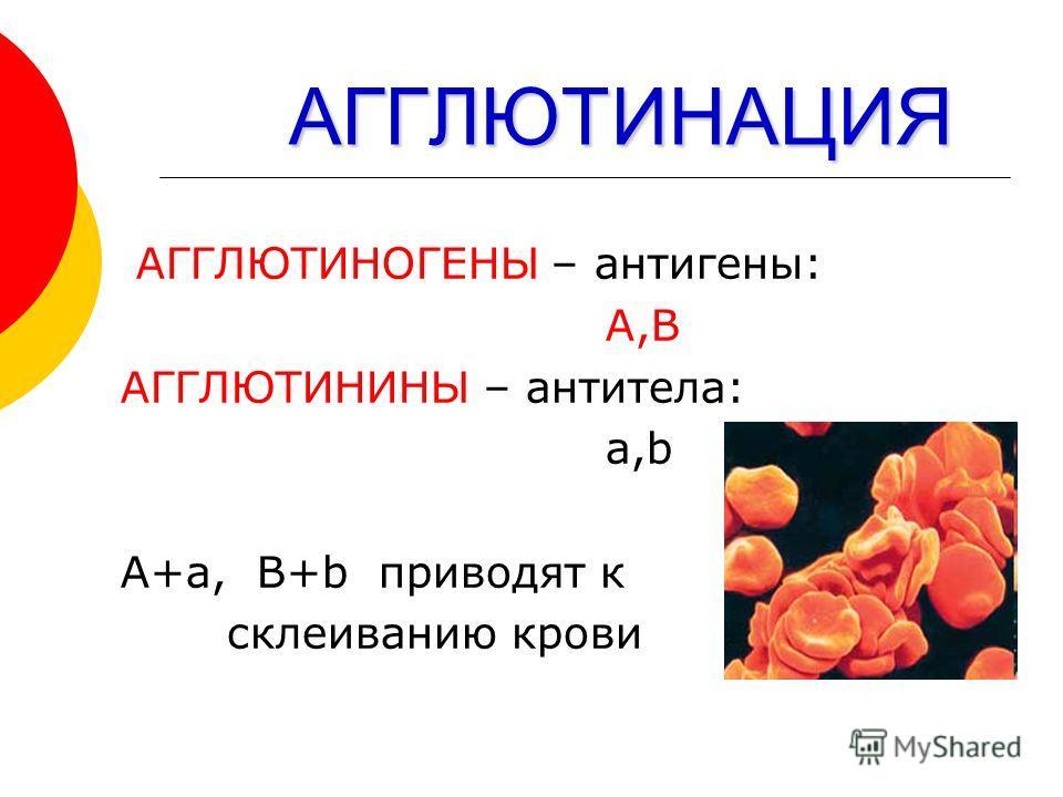 АГГЛЮТИНАЦИЯ АГГЛЮТИНАЦИЯ АГГЛЮТИНОГЕНЫ – антигены: А,В АГГЛЮТИНИНЫ – антитела: a,b А+а, B+b приводят к склеиванию крови