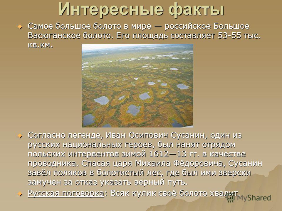 Интересные факты Самое большое болото в мире российское Большое Васюганское болото. Его площадь составляет 53-55 тыс. кв.км. Самое большое болото в мире российское Большое Васюганское болото. Его площадь составляет 53-55 тыс. кв.км. Согласно легенде,