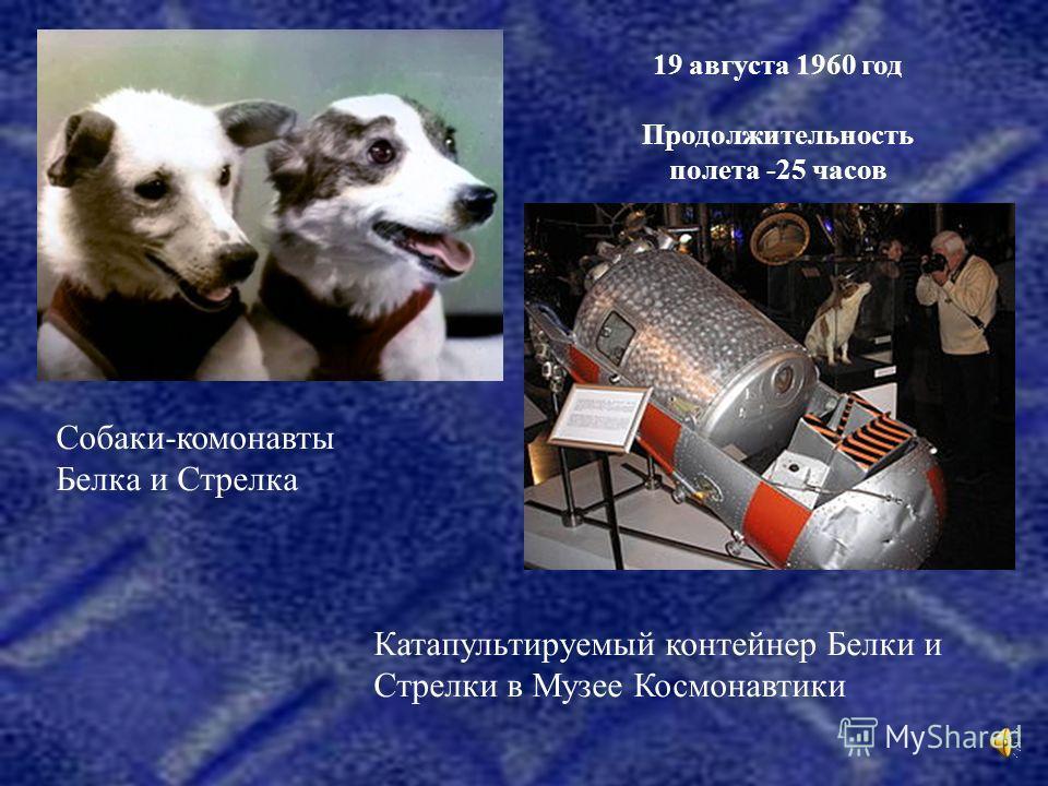 Собаки-комонавты Белка и Стрелка Катапультируемый контейнер Белки и Стрелки в Музее Космонавтики 19 августа 1960 год Продолжительность полета -25 часов