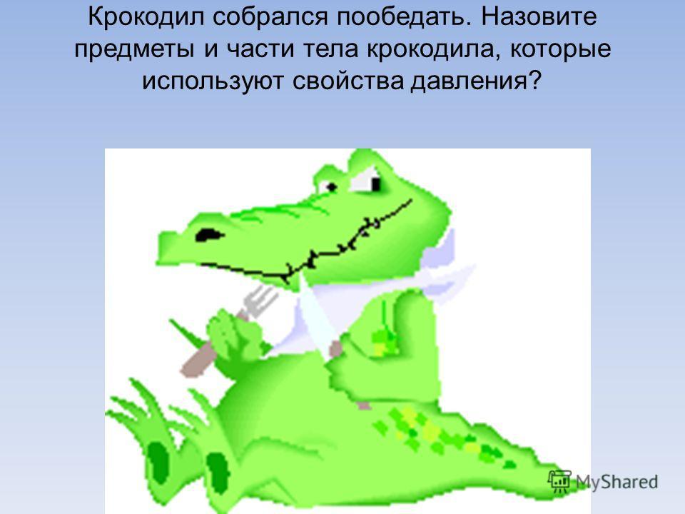 Крокодил собрался пообедать. Назовите предметы и части тела крокодила, которые используют свойства давления?