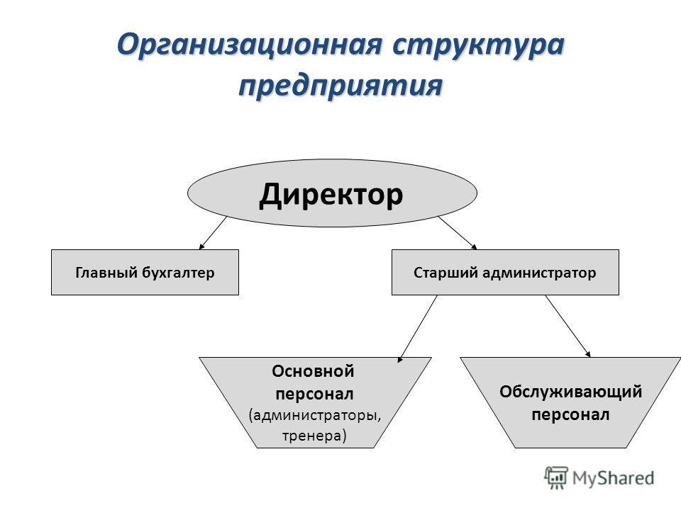 Организационная структура предприятия Директор Главный бухгалтерСтарший администратор Основной персонал (администраторы, тренера) Обслуживающий персонал