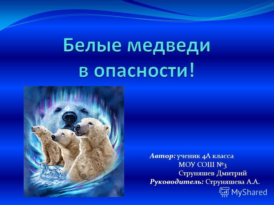 Автор: ученик 4А класса МОУ СОШ 3 Струняшев Дмитрий Руководитель: Струняшева А.А.