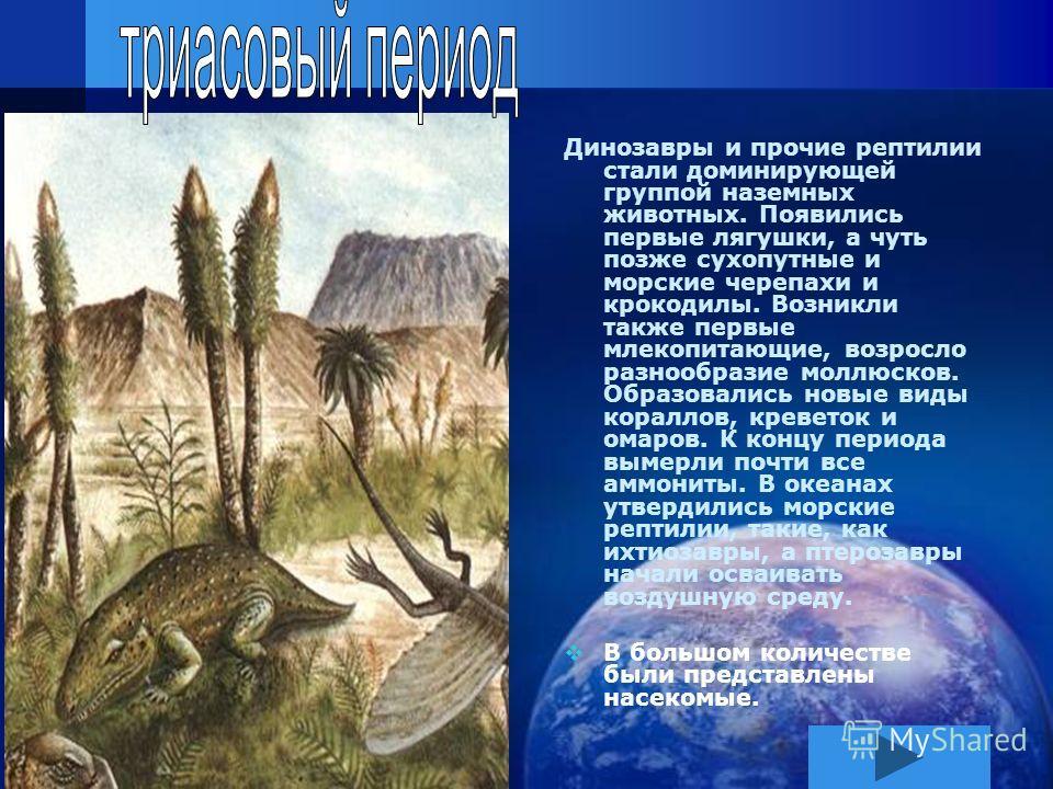 Динозавры и прочие рептилии стали доминирующей группой наземных животных. Появились первые лягушки, а чуть позже сухопутные и морские черепахи и крокодилы. Возникли также первые млекопитающие, возросло разнообразие моллюсков. Образовались новые виды