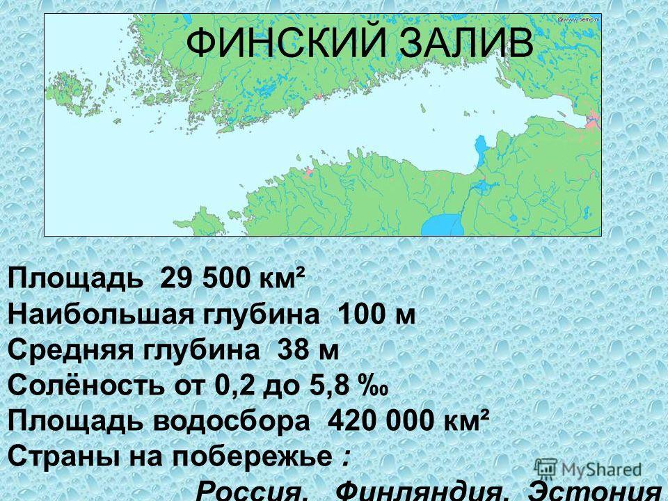 ФИНСКИЙ ЗАЛИВ Площадь 29 500 км² Наибольшая глубина 100 м Средняя глубина 38 м Солёность от 0,2 до 5,8 Площадь водосбора 420 000 км² Страны на побережье : Россия, Финляндия, Эстония