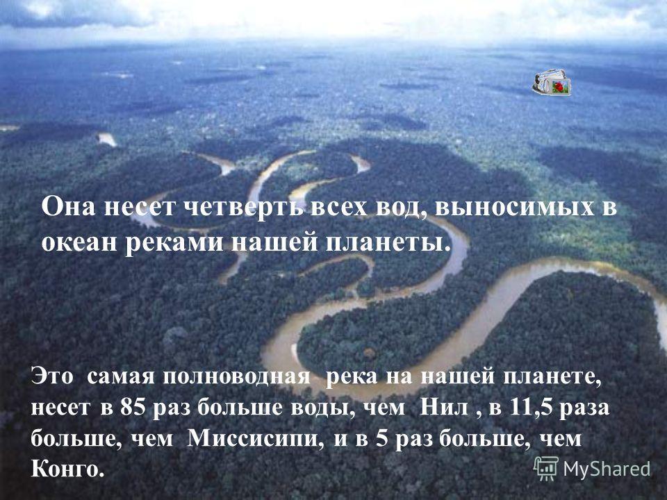 Это самая полноводная река на нашей планете, несет в 85 раз больше воды, чем Нил, в 11,5 раза больше, чем Миссисипи, и в 5 раз больше, чем Конго. Она несет четверть всех вод, выносимых в океан реками нашей планеты.