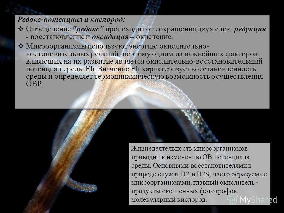 Редокс-потенциал и кислород: Определение