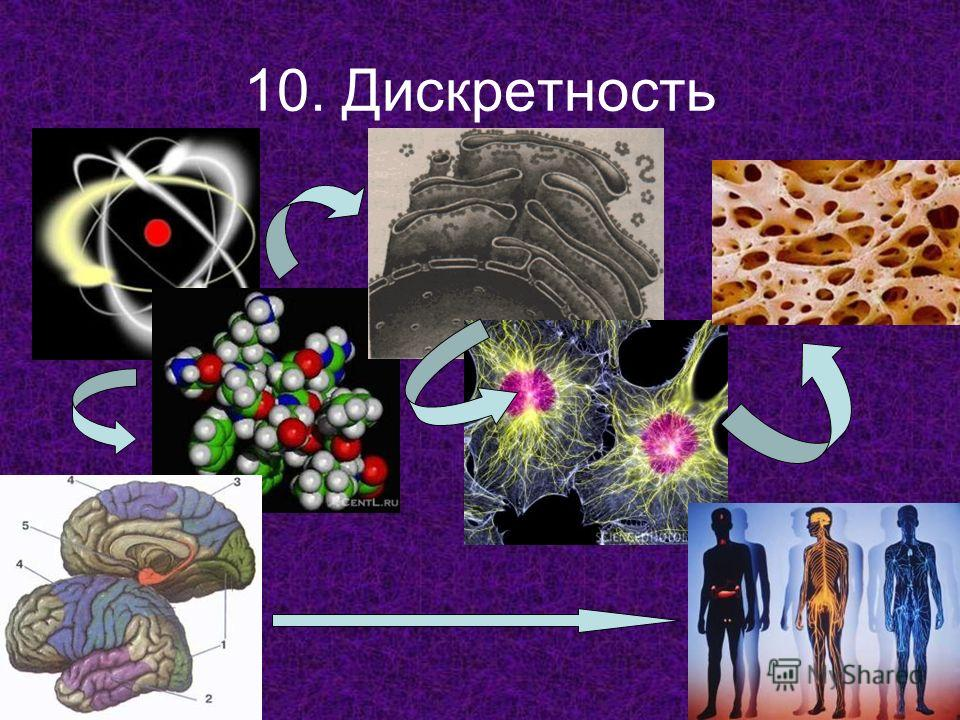10. Дискретность