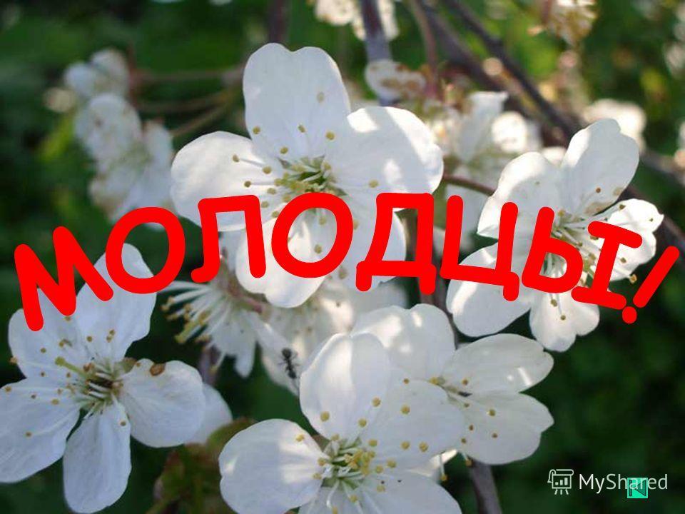 Все рады приходу весны!