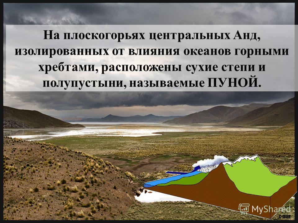 На плоскогорьях центральных Анд, изолированных от влияния океанов горными хребтами, расположены сухие степи и полупустыни, называемые ПУНОЙ.