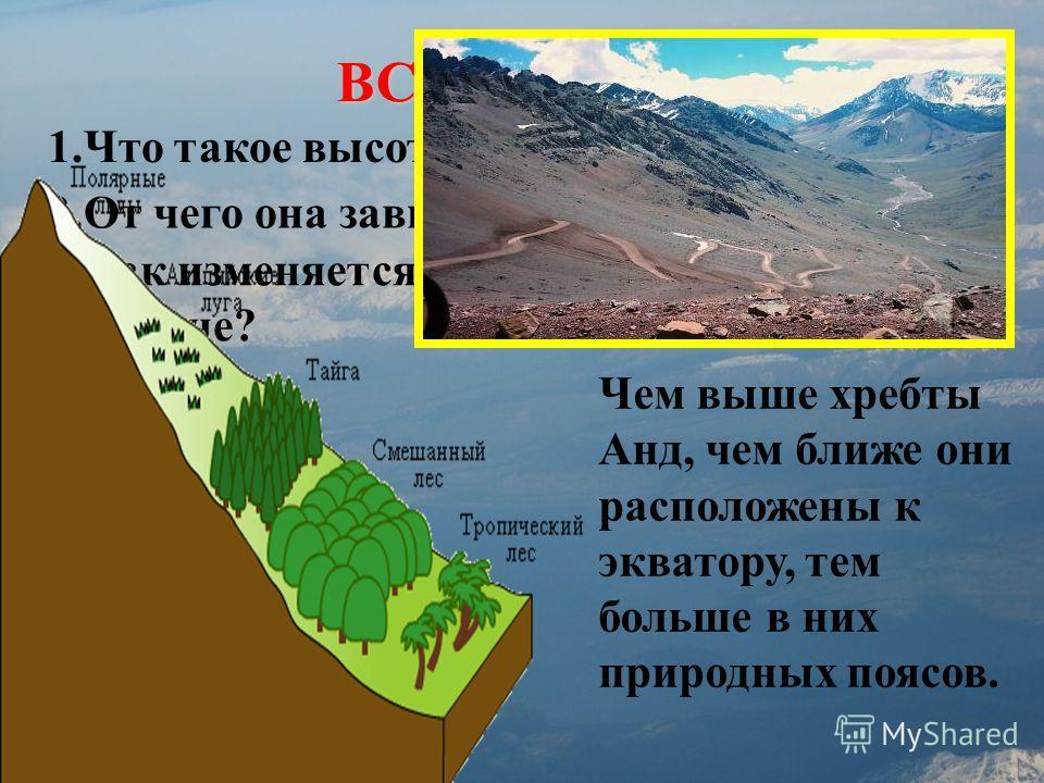 ВСПОМНИМ! 1.Что такое высотная поясность? 2.От чего она зависит? 3.Как изменяется природа от подножия к вершине? Чем выше хребты Анд, чем ближе они расположены к экватору, тем больше в них природных поясов.