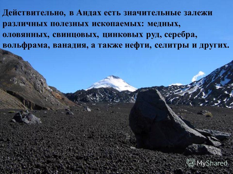 Действительно, в Андах есть значительные залежи различных полезных ископаемых: медных, оловянных, свинцовых, цинковых руд, серебра, вольфрама, ванадия, а также нефти, селитры и других.