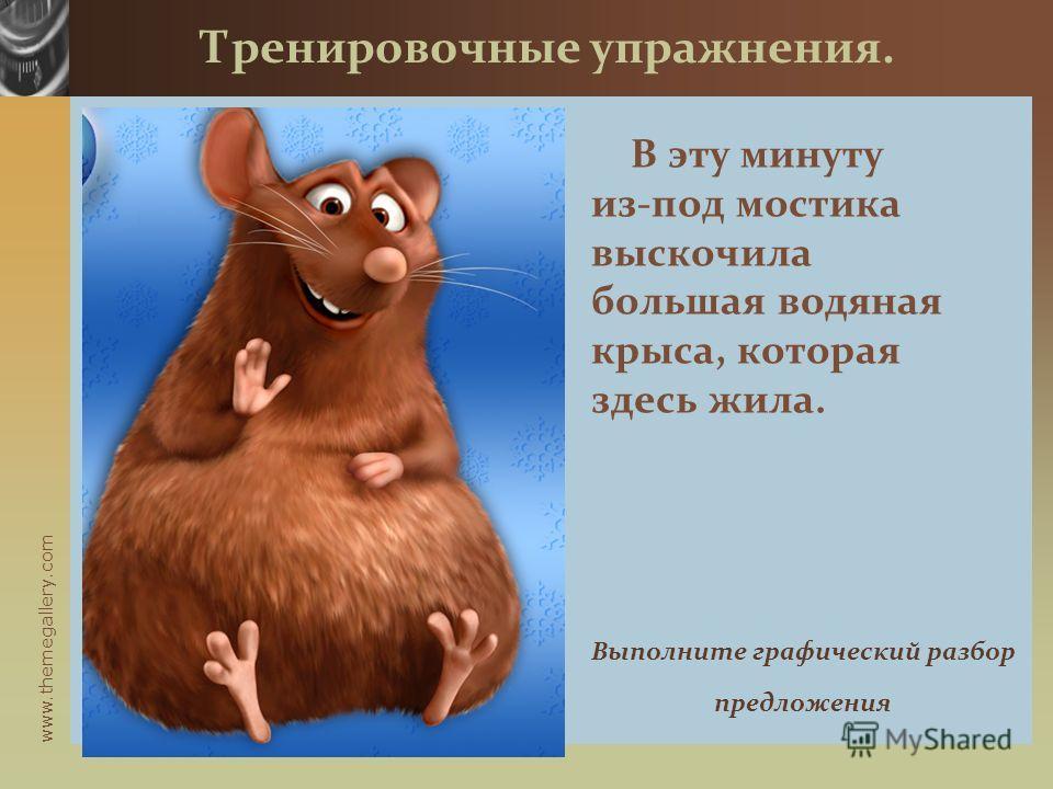 www.themegallery.com В эту минуту из-под мостика выскочила большая водяная крыса, которая здесь жила. Тренировочные упражнения. Выполните графический разбор предложения