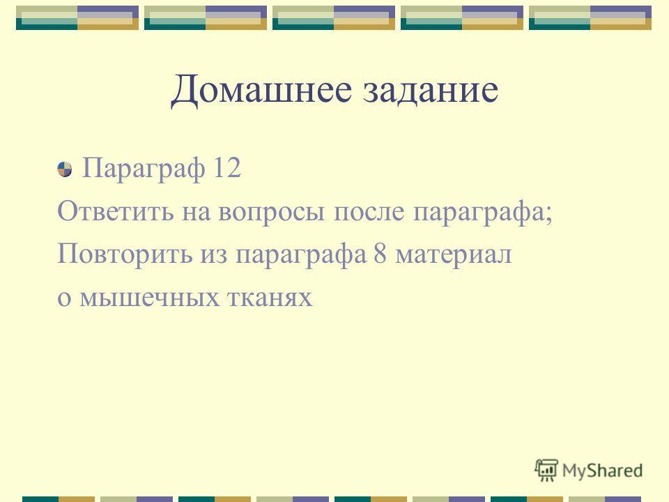 Презентация Скелет Поясов И Свободных Конечностей 8 Класс