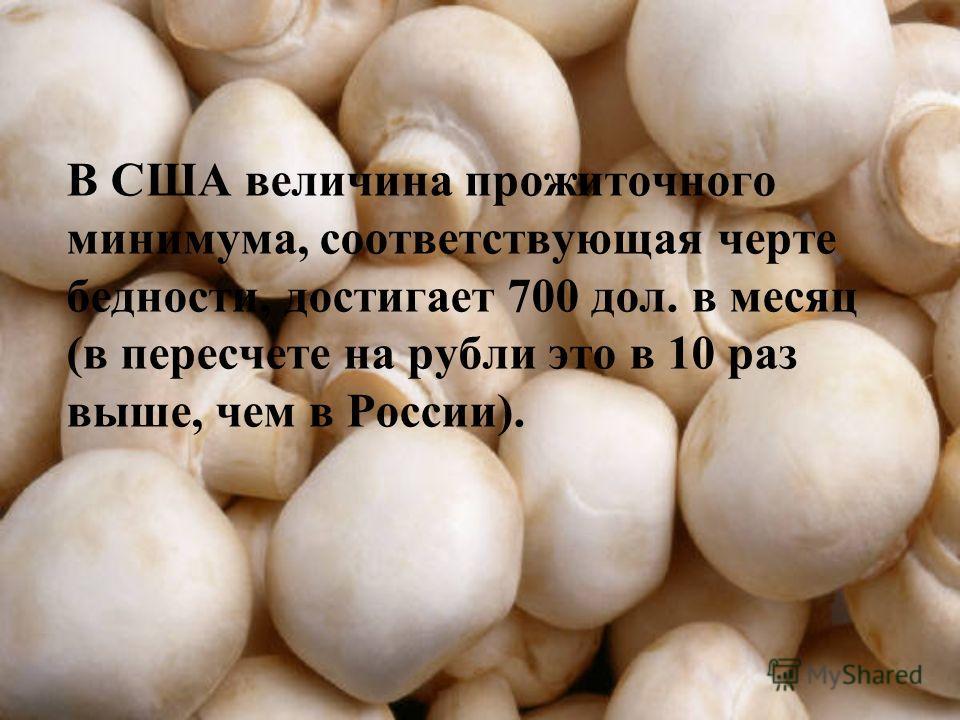 В США величина прожиточного минимума, соответствующая черте бедности, достигает 700 дол. в месяц (в пересчете на рубли это в 10 раз выше, чем в России).
