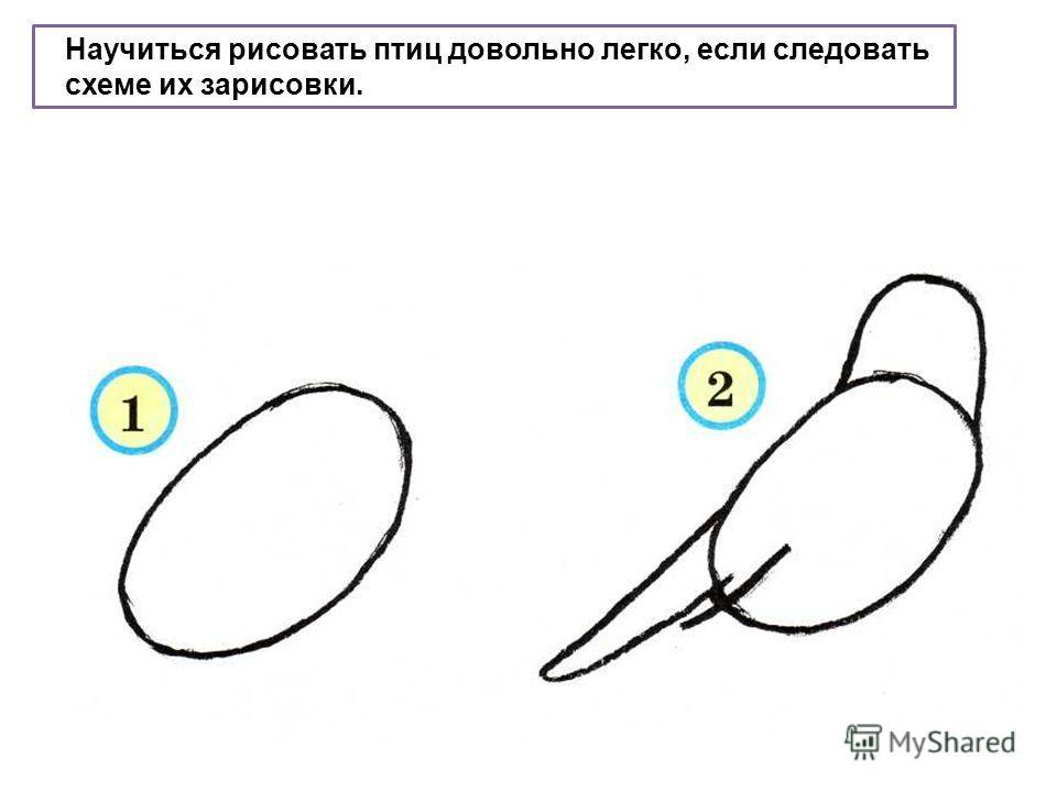 Как научиться рисовать карандашом с нуля, поэтапно - Цель