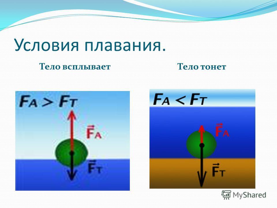 Условия плавания. Тело всплывает Тело тонет
