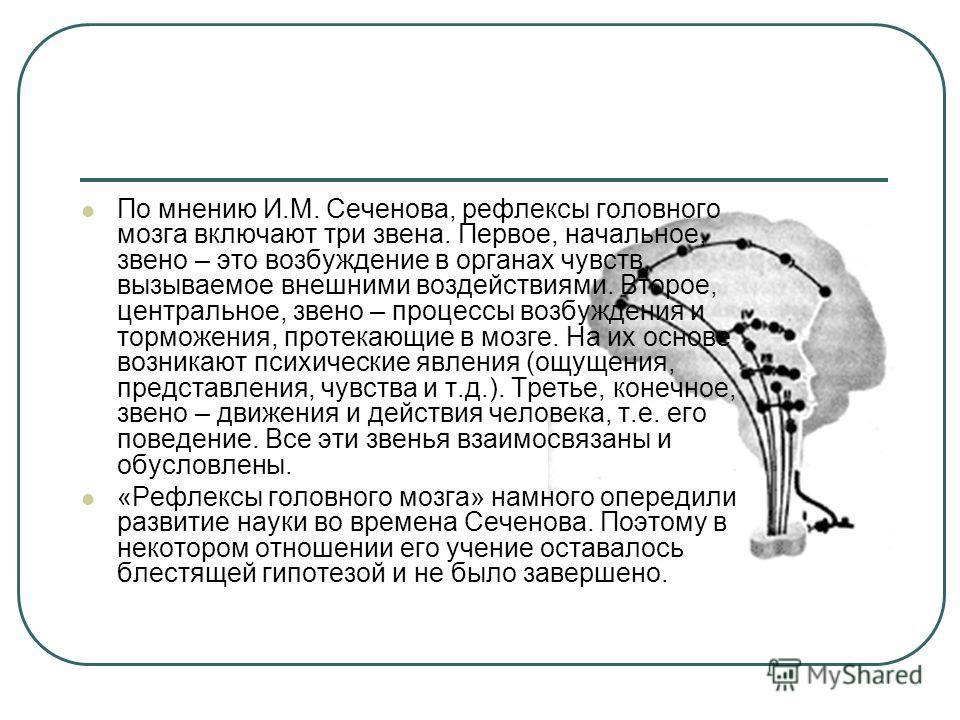 По мнению И.М. Сеченова, рефлексы головного мозга включают три звена. Первое, начальное, звено – это возбуждение в органах чувств, вызываемое внешними воздействиями. Второе, центральное, звено – процессы возбуждения и торможения, протекающие в мозге.