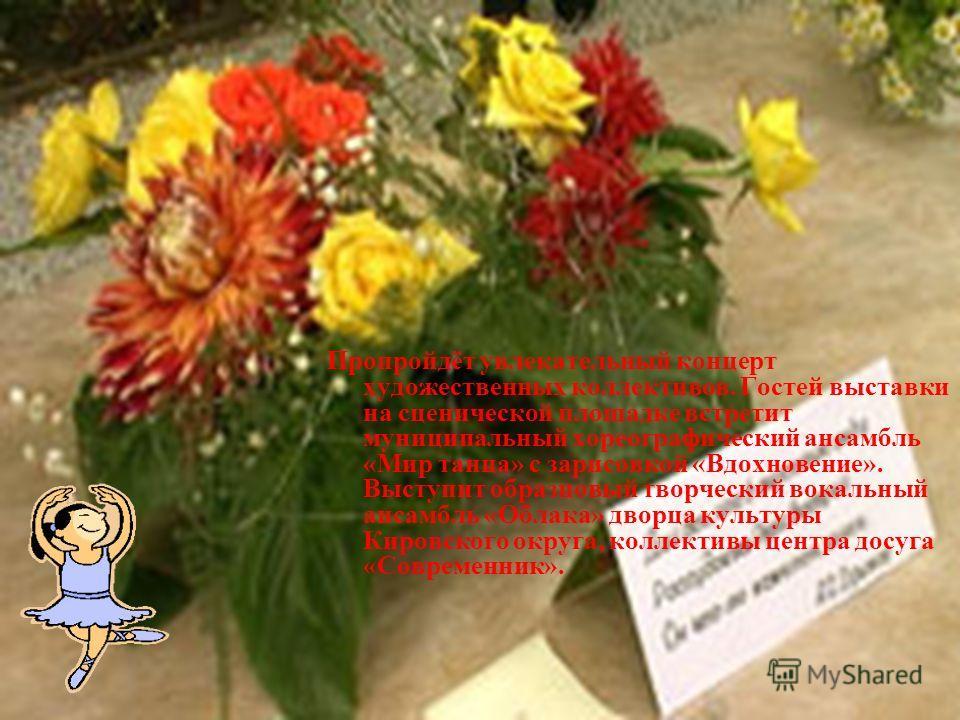 Флора. Цветочные экспозиции располагаются в трех павильонах. В выставке принимают участие областная и городская станции юннатов, ботанический сад ОмГАУ, предприятия, организации, дома творчества детей и юношества, предприниматели, школьные и дошкольн