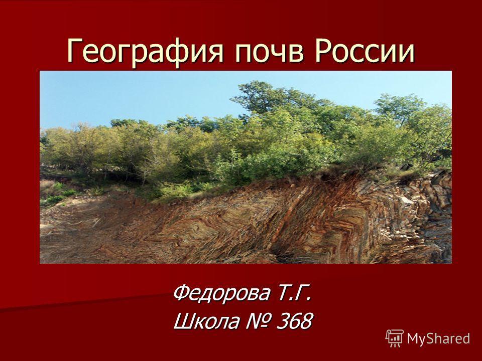 География почв России Федорова Т.Г. Школа 368