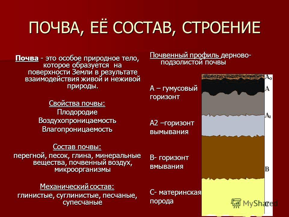 ПОЧВА, ЕЁ СОСТАВ, СТРОЕНИЕ Почва - это особое природное тело, которое образуется на поверхности Земли в результате взаимодействия живой и неживой природы. Свойства почвы: ПлодородиеВоздухопроницаемостьВлагопроницаемость Состав почвы: перегной, песок,