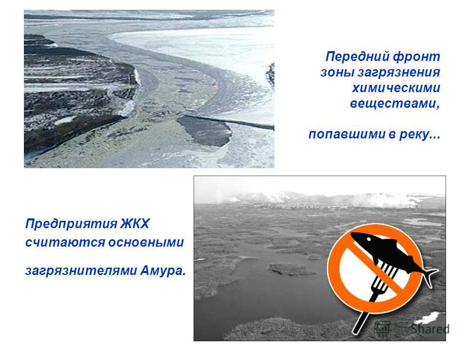 Передний фронт зоны загрязнения химическими веществами, попавшими в реку... Предприятия ЖКХ считаются основными загрязнителями Амура.