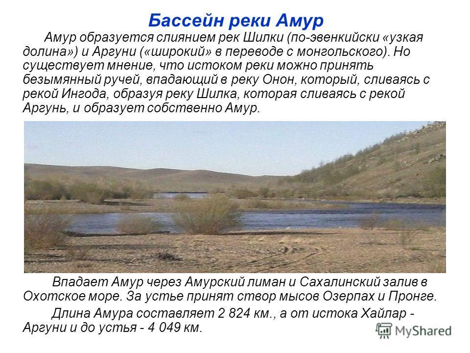 Бассейн реки Амур Амур образуется слиянием рек Шилки (по-эвенкийски «узкая долина») и Аргуни («широкий» в переводе с монгольского). Но существует мнение, что истоком реки можно принять безымянный ручей, впадающий в реку Онон, который, сливаясь с реко