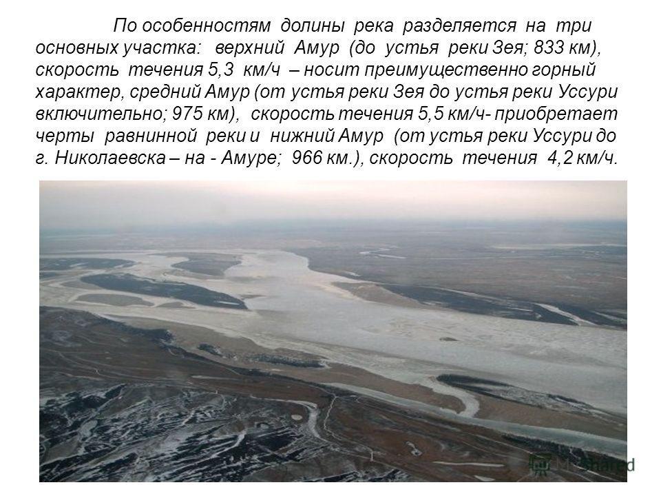 По особенностям долины река разделяется на три основных участка: верхний Амур (до устья реки Зея; 833 км), скорость течения 5,3 км/ч – носит преимущественно горный характер, средний Амур (от устья реки Зея до устья реки Уссури включительно; 975 км),