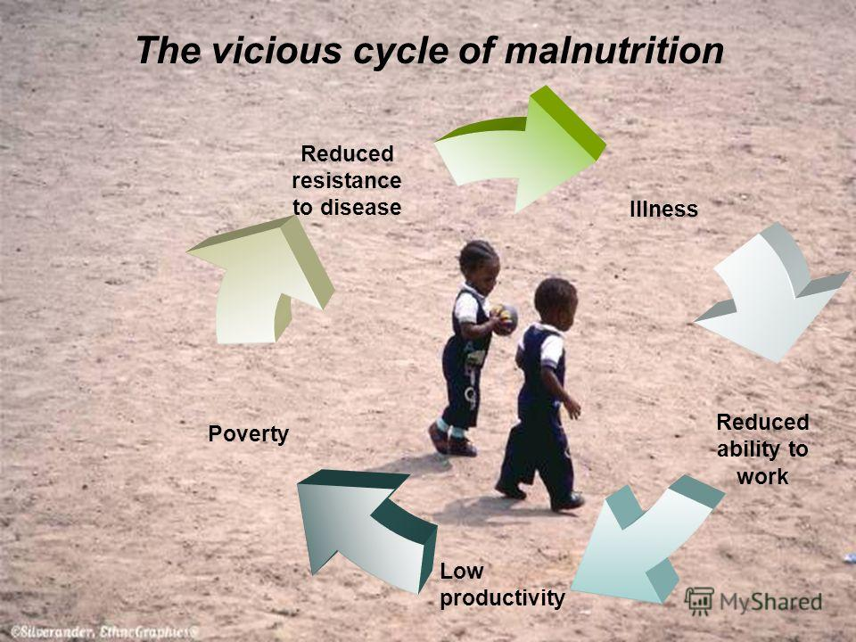 The vicious cycle of malnutrition Illness Reduced ability to work Low productivity Poverty Reduced resistance to disease