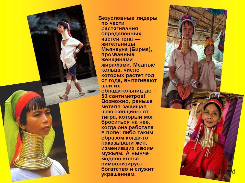 Безусловные лидеры по части растягивания определенных частей тела жительницы Мьянауна (Бирма), прозванные женщинами жирафами. Медные кольца, число которых растет год от года, вытягивают шеи их обладательниц до 50 сантиметров! Возможно, раньше металл