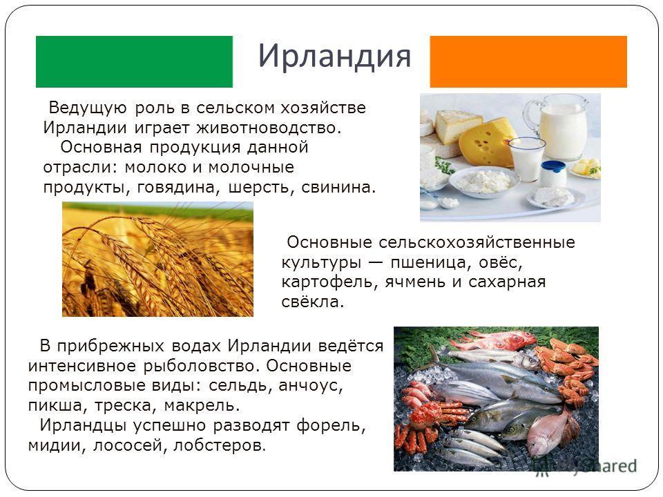 Ирландия Ведущую роль в сельском хозяйстве Ирландии играет животноводство. Основная продукция данной отрасли: молоко и молочные продукты, говядина, шерсть, свинина. В прибрежных водах Ирландии ведётся интенсивное рыболовство. Основные промысловые вид