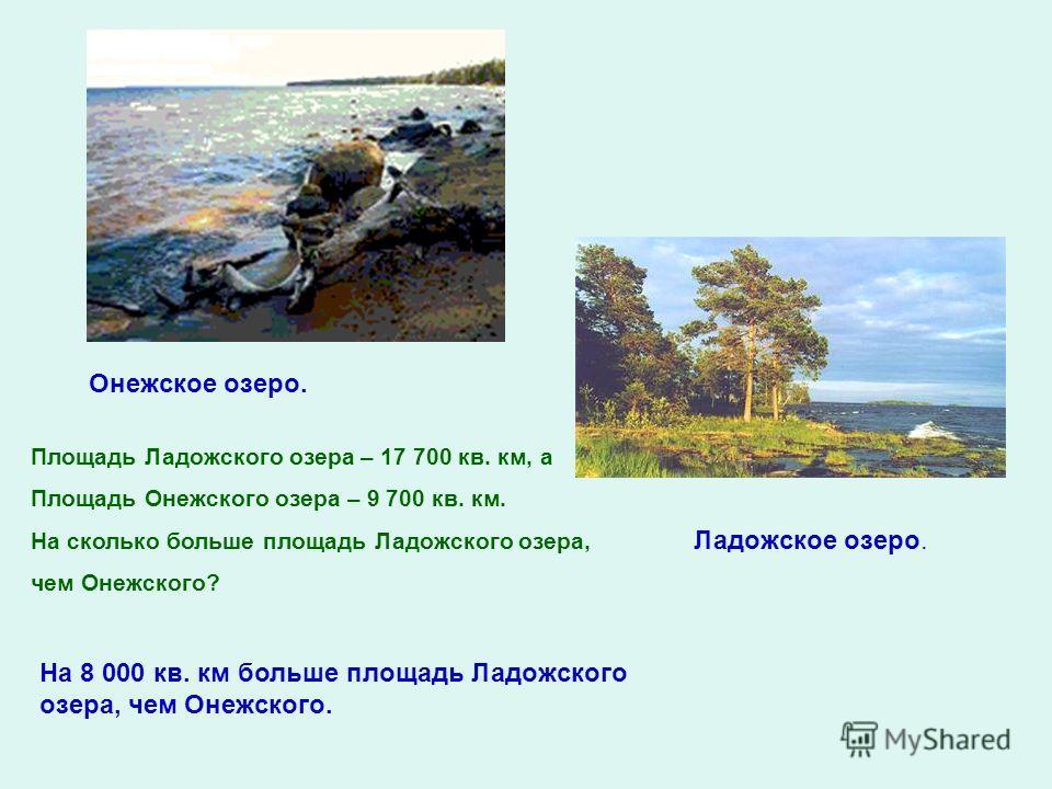 Площадь Ладожского озера – 17 700 кв. км, а Площадь Онежского озера – 9 700 кв. км. На сколько больше площадь Ладожского озера, чем Онежского? Онежское озеро. Ладожское озеро. На 8 000 кв. км больше площадь Ладожского озера, чем Онежского.