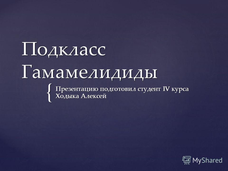 { Подкласс Гамамелидиды Презентацию подготовил студент IV курса Ходыка Алексей